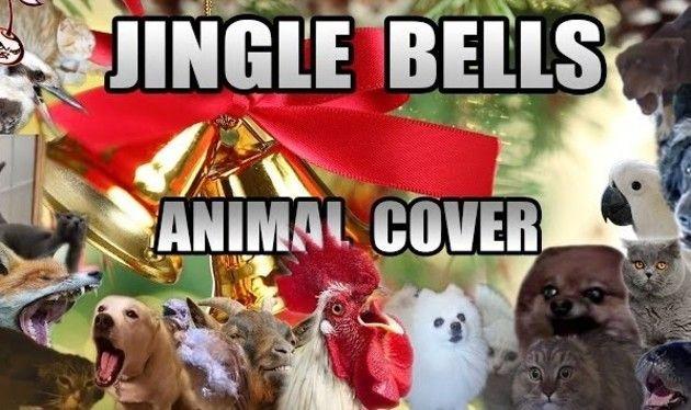 動物鳴き声クリスマスソング