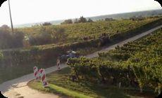 ラリーカーがブドウ畑に突っ込む事故クラッシュ