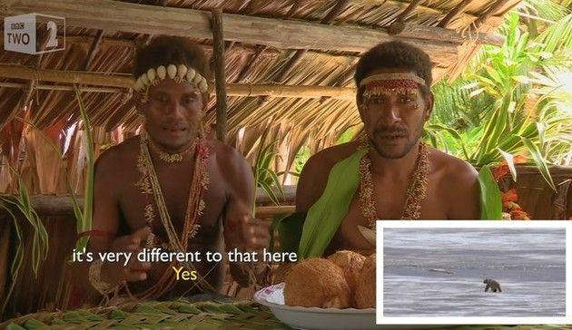 部族にシロクマ映像