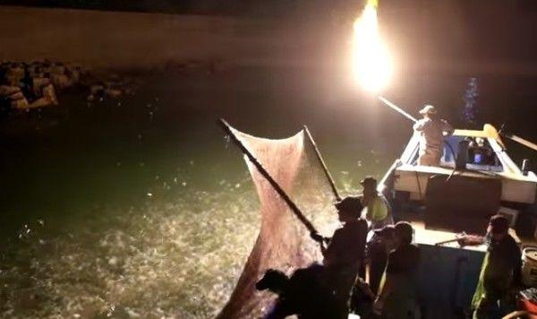 台湾のかがり火漁