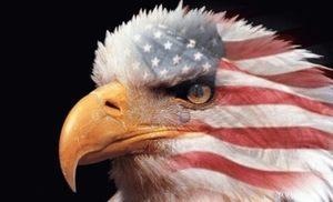 自国籍の誇り、海外の反応