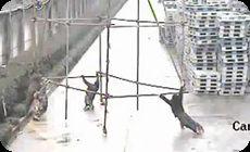 中国で4人が同時に感電死する映像