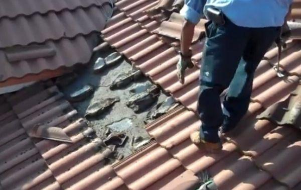 屋根の瓦を開けたら大量のコウモリが居た動画