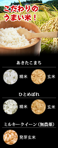 ひろっきい米 商品一覧