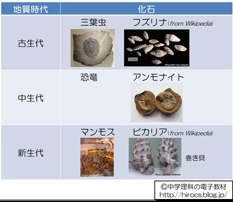 解説 地質時代と化石