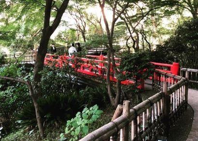 椿山荘_5