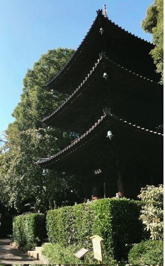 椿山荘_4