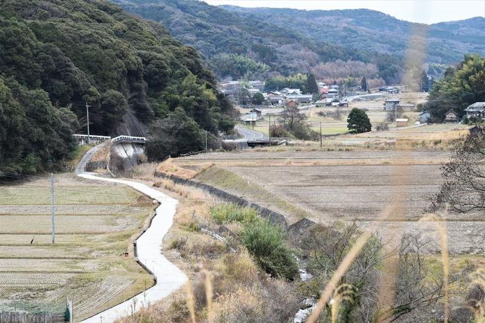 satoyama-0110