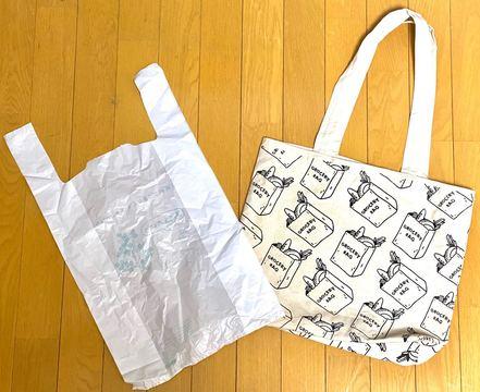 【疑問】う~ん、ぶっちゃけ『エコバッグ』と『レジ袋』ってどっちがいいのかな?
