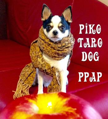 2016-Halloween-Piko-Taro-PPAP-2