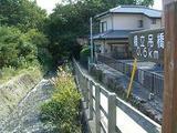 橋立吊橋1