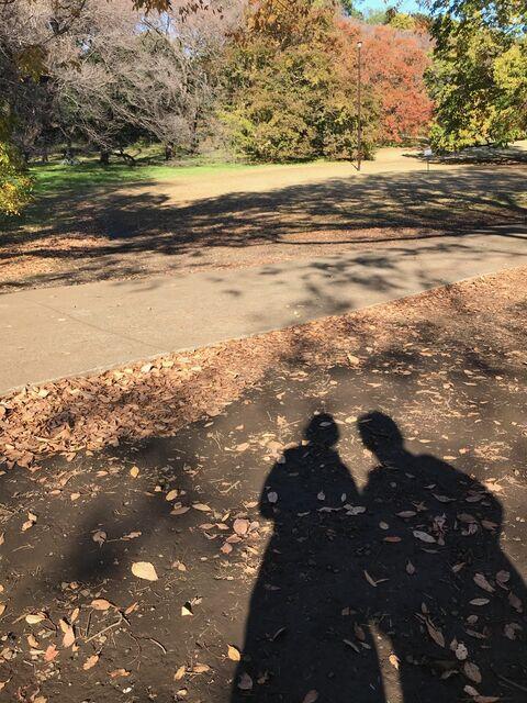 夫婦で砧公園