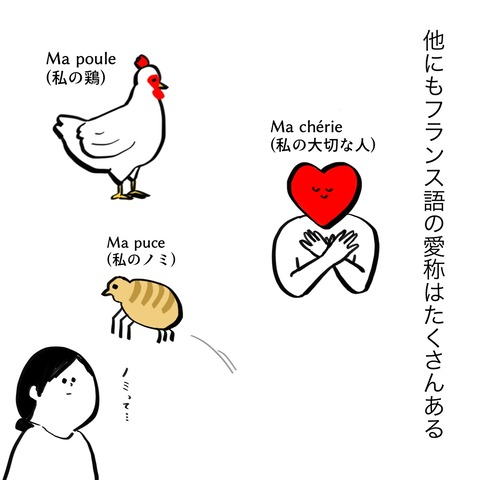 livedoorブログ2 13
