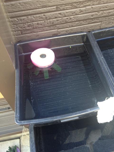メダカ容器に浮かぶ産卵床