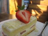 表参道 ケーキ