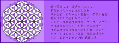 shinnseikikagaku