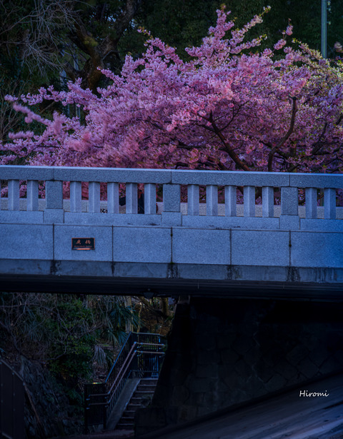 lr blog Ichijomodoribashi-01082