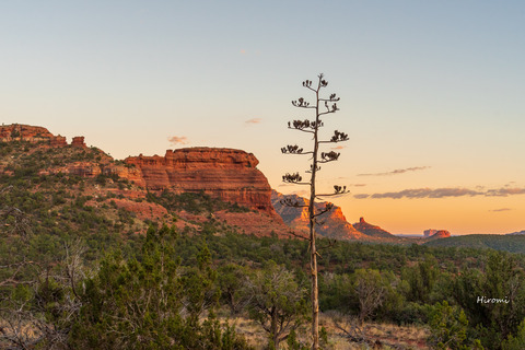 lr blog Sedona Boynton Canyon-08912