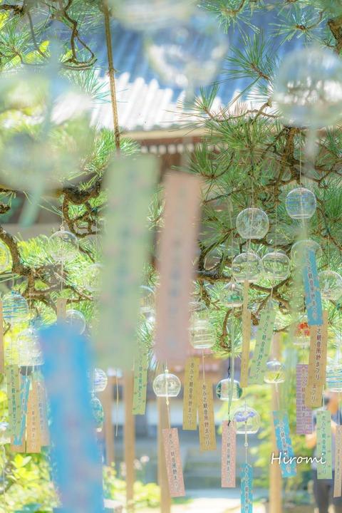 lr blog Ofusakannon-02706-2