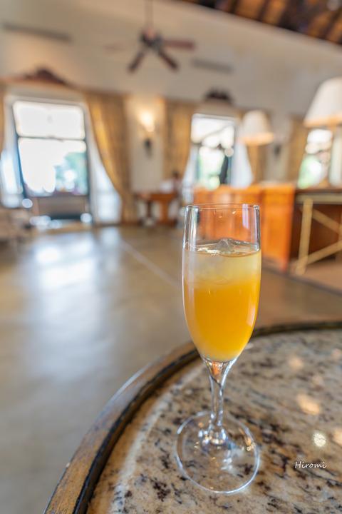 lr blog Livingston welcome drink -02003