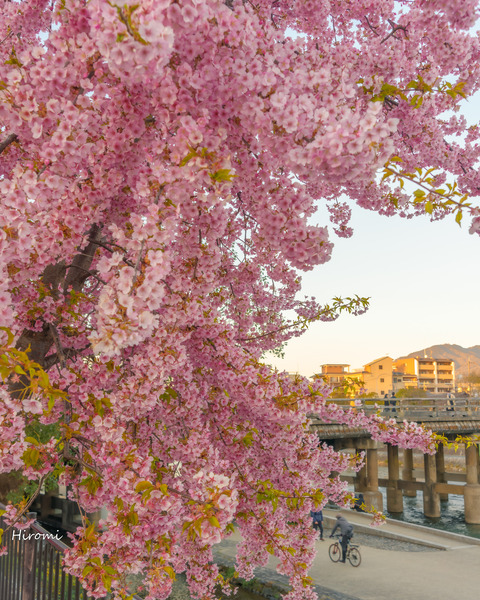 lr blog Sanjoohashi-01028