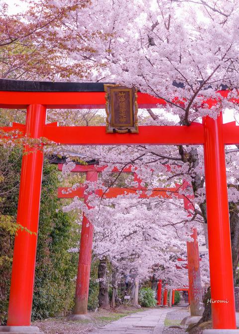 lr blog Takenakainari-06414