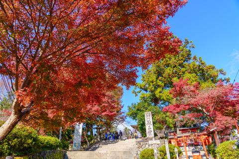 lr blog Yoshinoyama-03695
