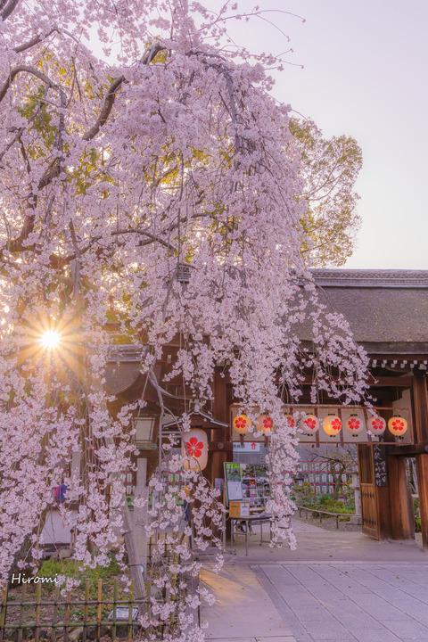 lr blog Hiranojinja-01699
