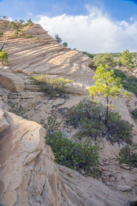 lr blog sedona 2nd hike-08421