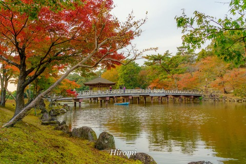 lr blog Ukimido-02475