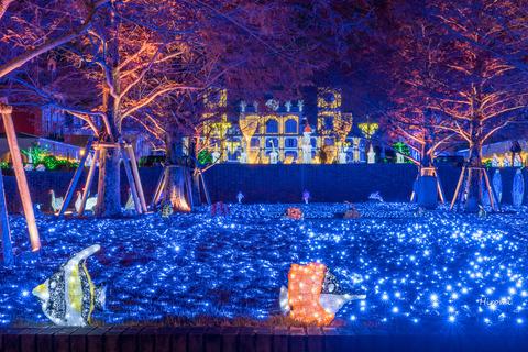 lr blog Kobe Illuminage-06375