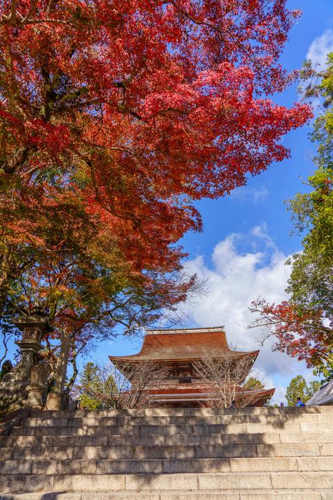 lr blog Yoshinoyama-03704