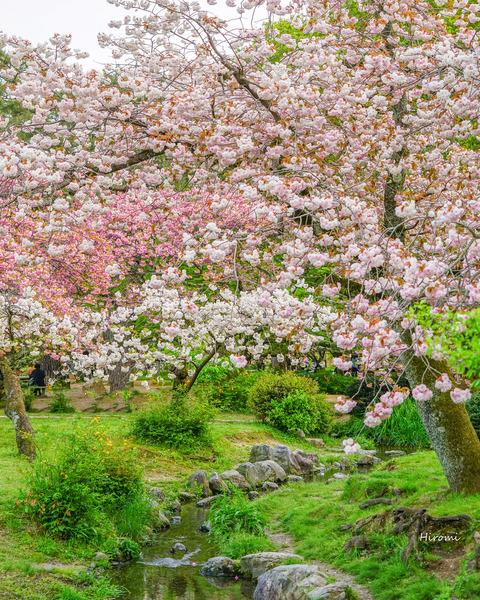 lr blog Kyotogyoen-04573 ps