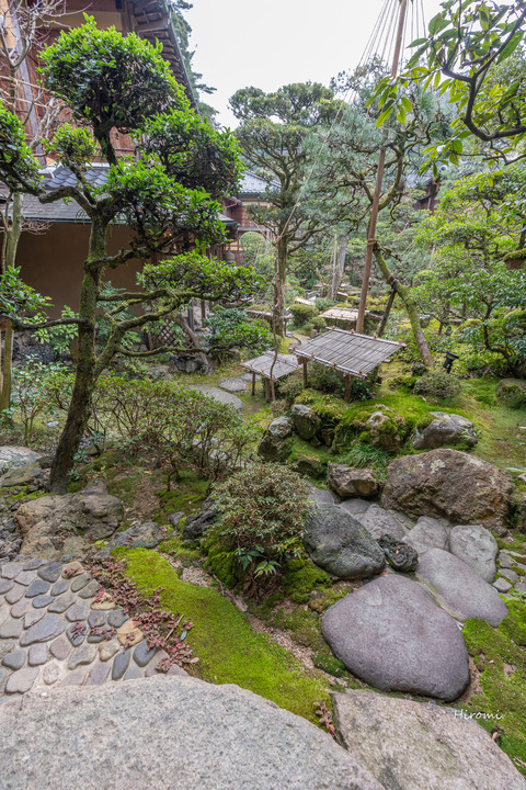 lr blog nishimiraya-01893