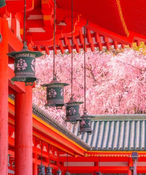 lr blog Heianjingu-07451