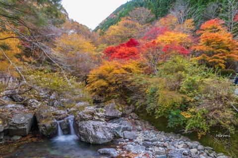 lr blog Mitaraikeikoku-04538