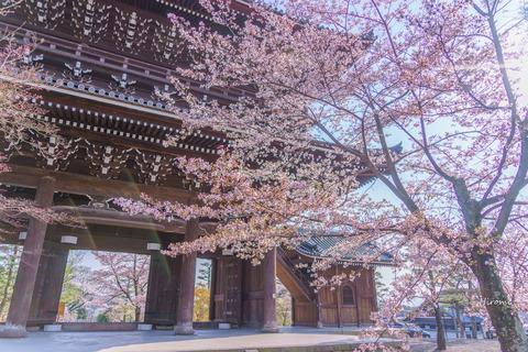 lr blog konkaikomyoji-05429