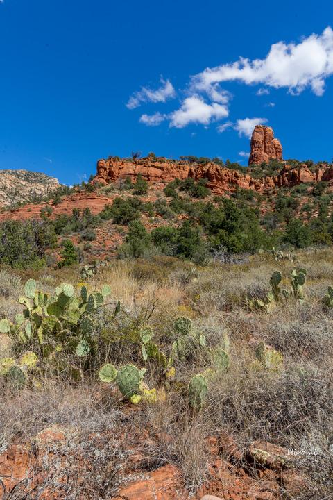 lr blog sedona Thunder mt trail Chimny rock-08232