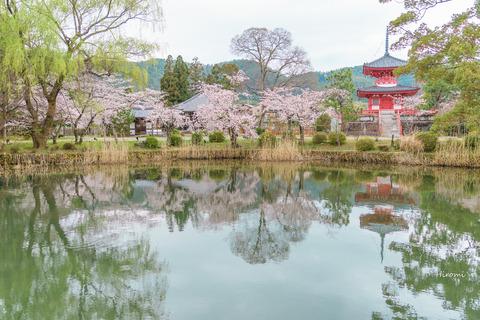 lr blog Daikakuji-01442