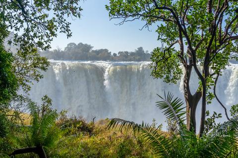 lr blog Victoria falls Zimbabue-04953