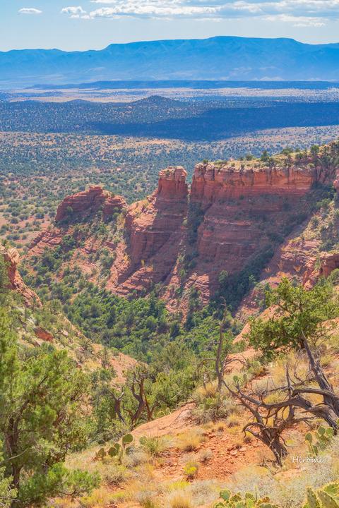 lr blog 2nd hike-08284
