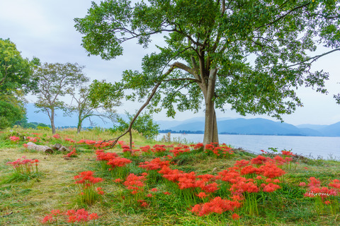 lr blog Katsurahama 2019-10-02-01761