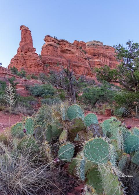 lr blog Boynton Canyon Enchantment-08917