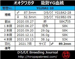 YG20A1-10ラベル