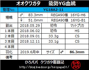 YG18A2-11