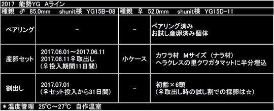 2017能勢YG Aライン