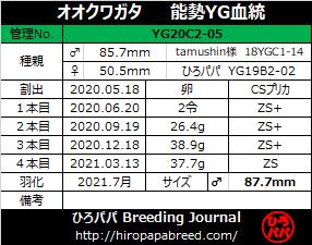 YG20C2-05ラベル