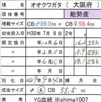 CCI20200118_0001