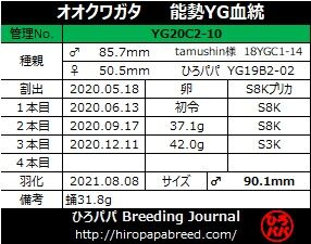 YG20C2-10ラベル