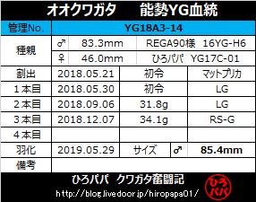 YG18A3-14